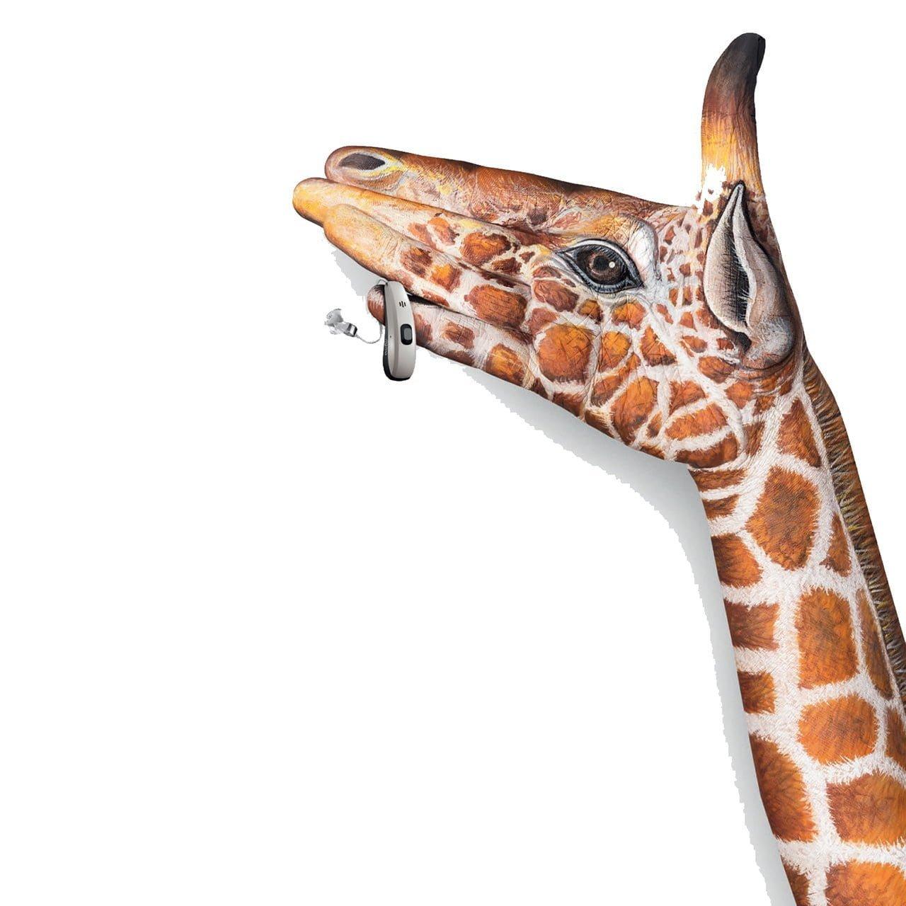 A close up of a giraffe